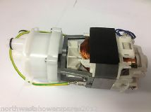 Triton Pump And Motor Assembly 84000130